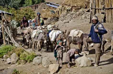 Montagnes du Simien, en chemin... - Ethiopie -