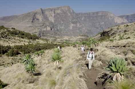 Trek entre Chennek et Sona, massif du Simien - Ethiopie -