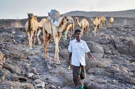 Descente du volcan Erta Ale, Danakil - Ethiopie -