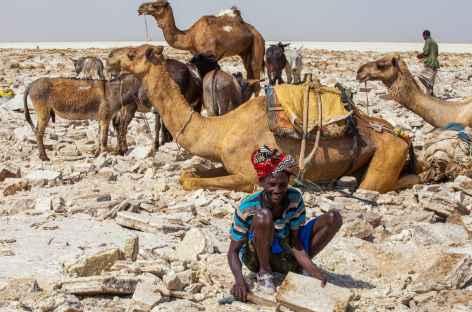 Découpage des briques de sel, dépression du Danakil - Ethiopie -