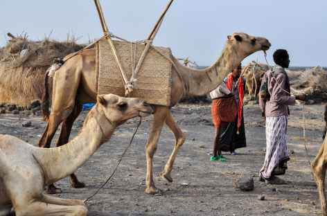 Askoma, camp de base du Erta Ale - Ethiopie -