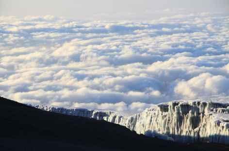 Glaciers sommitaux du Kilimanjaro - Tanzanie -