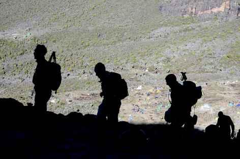 Montée dans le Barranco Wall, Kilimanjaro - Tanzanie -