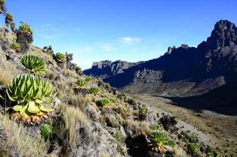 Vallée de Mackinder, Mont Kenya - Kenya -