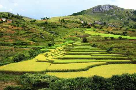 Campagne betsileo, vers Fianarantsoa - Madagascar -