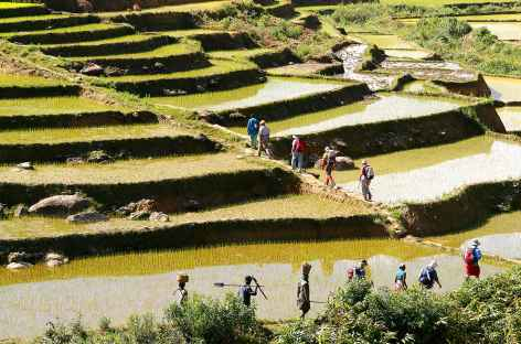 Trek en pays zafimaniry - Madagascar -