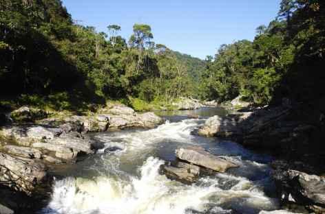 Dans le parc de Ranomafana - Madagascar -