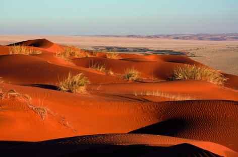 Dunes d'Elim au coucher du soleil - Namibie -