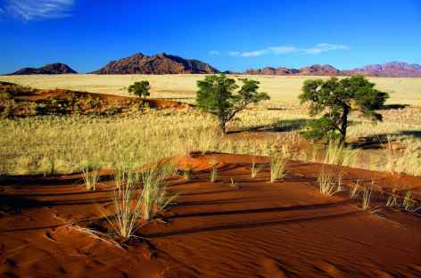 Dunes d'Elim - Namibie -