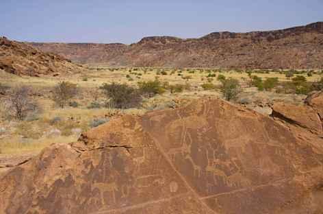 Gravures rupestres à Twyfelfontein - Namibie -