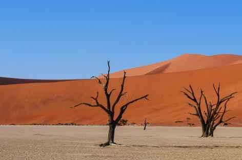 deadvlei - Namibie -