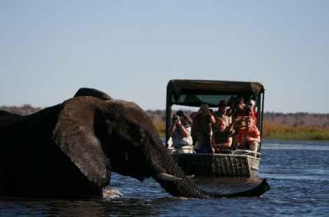 sur la rivière Chobe -