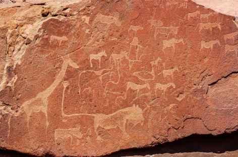 Gravures rupestres de Twyfelfontein - Namibie -