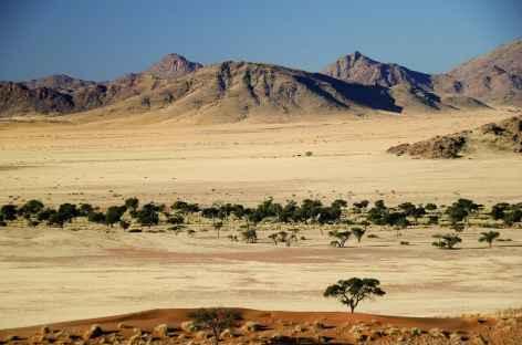Désert du Namib, vue sur les montagnes du Naukluft - Namibie -
