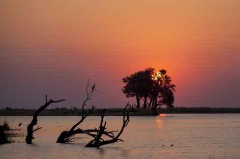 Coucher du soleil sur la rivière Chobe - Botswana -
