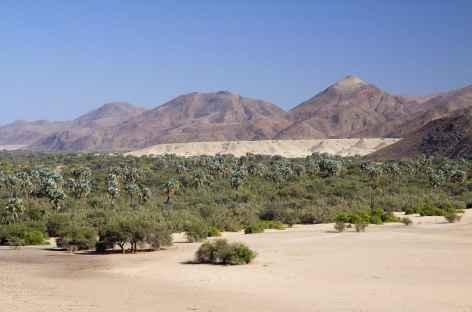 Palmeraie de Purros, Kaokoland - Namibie -