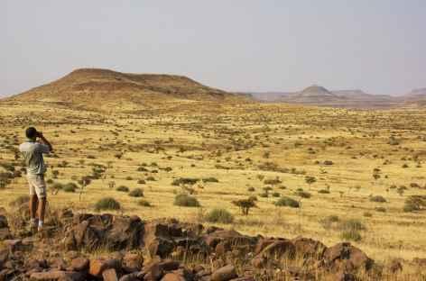 Paysage de savane du Damaraland - Namibie -