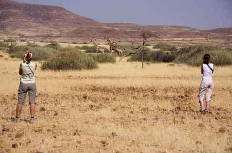 Région du Damaraland, vers Palmwag - Namibie -