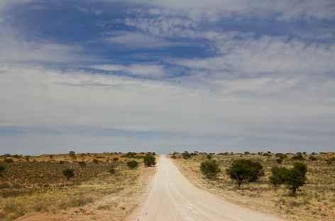 Piste entre le désert du Kalahari et Keetsmanhoop - Namibie -