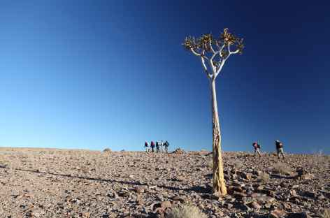 Marche en direction du Fish River Canyon - Namibie -
