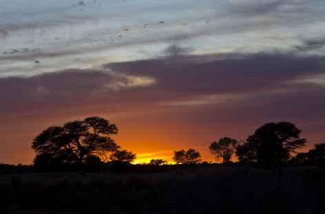 Coucher du soleil dans le désert du Kalahari - Namibie -