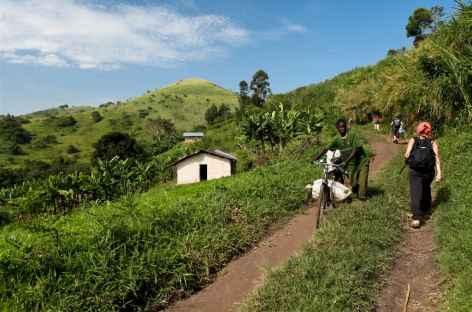Randonnée vers les lacs de cratère de Kasinda - Ouganda -