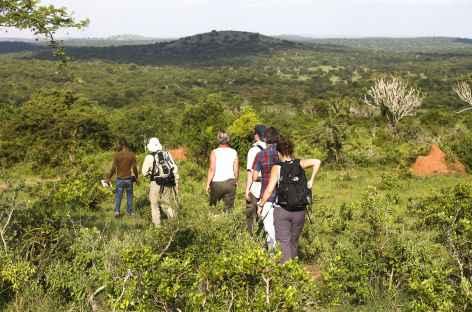 Safari à pied dans le Parc national du Lac Mburo - Ouganda -