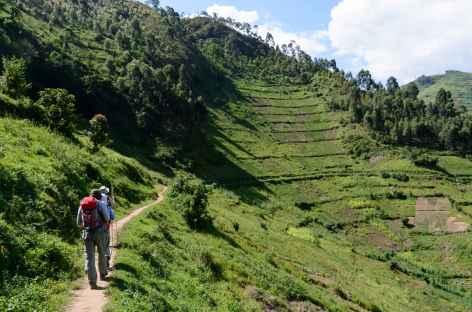 Marche vers Rushaga, au nord du lac Mutanda -