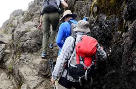 Avant de rejoindre le plateau de Shira, Kilimanjaro - Tanzanie -