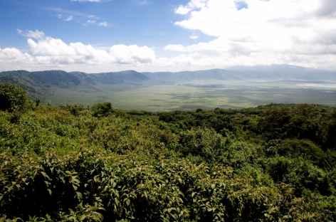 Caldeira du Ngorongoro - Tanzanie -
