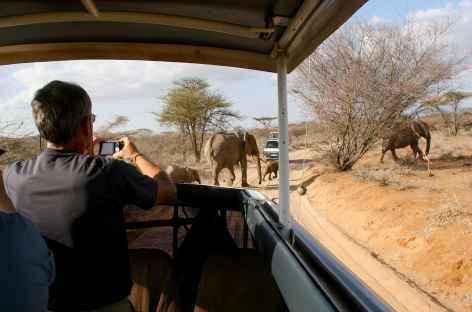 Rencontre avec les éléphants, Parc national du Serengeti - Tanzanie -