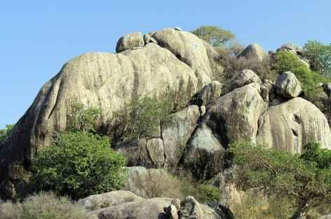 Kopjes granitiques du Serengeti - Tanzanie -