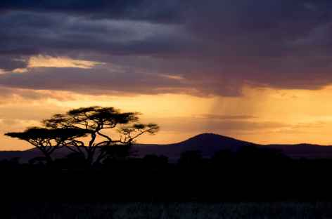 Coucher de soleil dans le Serengeti - Tanzanie -