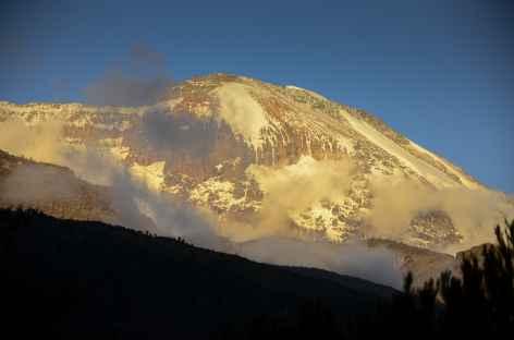 Kilimanjaro au coucher du soleil depuis notre camp de Shira (3800 m) - Tanzanie -