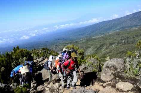 Etape entre Machame Camp et le plateau de Shira au Kilimandjaro - Tanzanie -