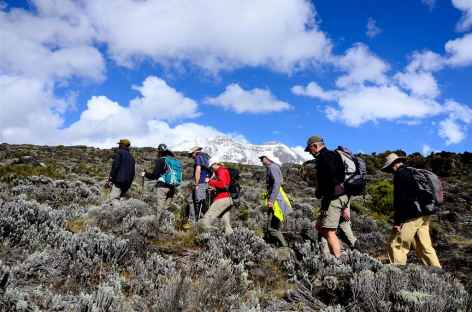 Avant le plateau de Shira, Kilimanjaro - Tanzanie -