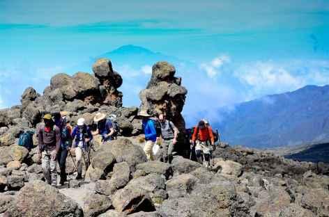 Etape entre Shira et Barranco, Kilimanjaro - Tanzanie -