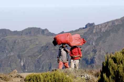 Portage sur la tête, Kilimanjaro - Tanzanie -
