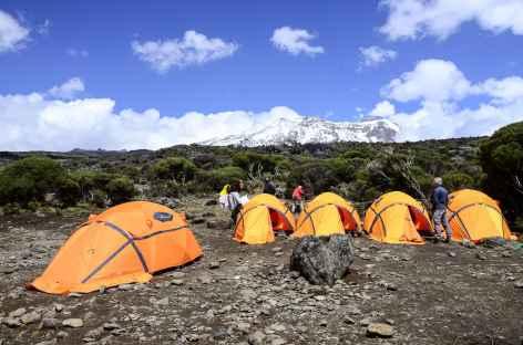 Notre camp au plateau de Shira (3800 m), Kilimanjaro - Tanzanie -