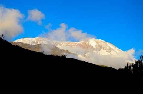 Sommet depuis le camp de Shira, au coucher du soleil, Kilimanjaro - Tanzanie -