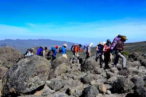 Trek entre Shira et Barranco, Kilimandjaro - Tanzanie -