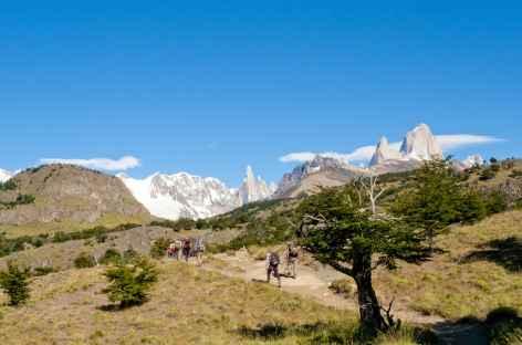 Balade vers la laguna Torre - Argentine -