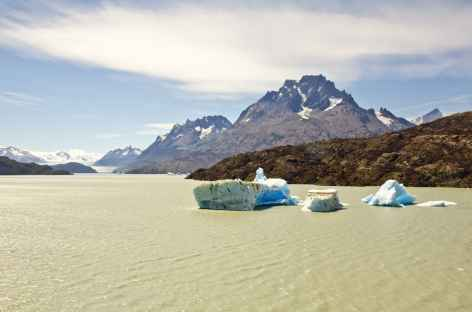 Icebergs sur le lac Grey - Chili -
