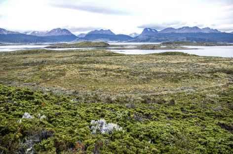 Dans le parc national de Lapataia - Argentine -