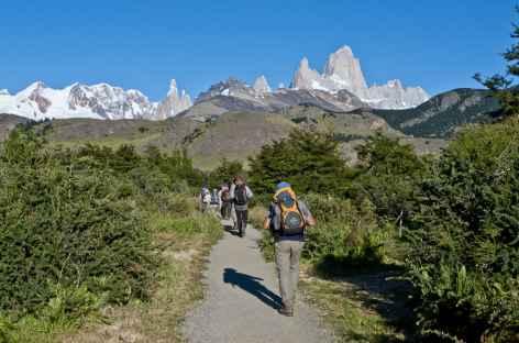 Parc national des Glaciers, marche vers la laguna de los Tres - Argentine -