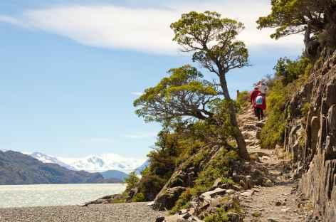 Marche au bord du lac Grey - Argentine -
