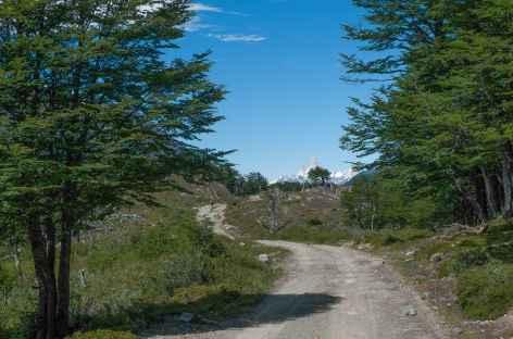 Marche entre Candelaria Mancilla et le lac Desierto - Chili -