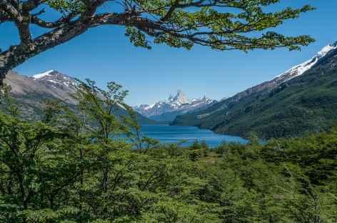 Marche entre Candelaria Mancilla et le lac Desierto avec le Fitz Roy en toile de fond - Chili -