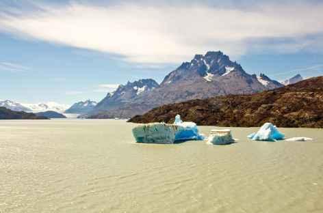 Icebergs sur le lac Grey - Argentine -