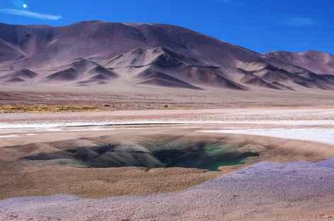 Le site 'Ojos del Mar' dans la Puna - Argentine -